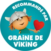Graine de Viking